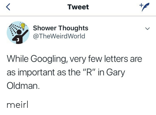 "Shower, Shower Thoughts, and MeIRL: <  Tweet  Shower Thoughts  @TheWeirdWorld  While Googling, very few letters are  as important as the ""R"" in Gary  Oldman.  + meirl"