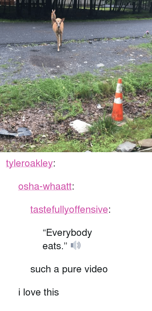 "osha: <p><a class=""tumblr_blog"" href=""http://tyleroakley.tumblr.com/post/148377125169"">tyleroakley</a>:</p> <blockquote> <p><a class=""tumblr_blog"" href=""http://osha-whaatt.tumblr.com/post/148375903325"">osha-whaatt</a>:</p> <blockquote> <p><a class=""tumblr_blog"" href=""http://tastefullyoffensive.tumblr.com/post/148359174843"">tastefullyoffensive</a>:</p> <blockquote> <p>""Everybody eats."" 🔊</p> </blockquote> <p>such a pure video</p> </blockquote> <p>i love this</p> </blockquote>"