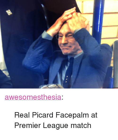 "picard: <p><a href=""http://awesomesthesia.tumblr.com/post/173746338193/real-picard-facepalm-at-premier-league-match"" class=""tumblr_blog"">awesomesthesia</a>:</p>  <blockquote><p>Real Picard Facepalm at Premier League match</p></blockquote>"
