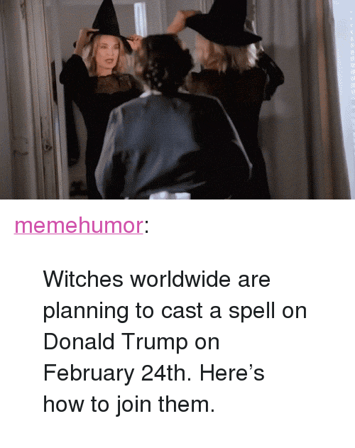 """Donald Trump On: <p><a href=""""http://memehumor.tumblr.com/post/157583982062/witches-worldwide-are-planning-to-cast-a-spell-on"""" class=""""tumblr_blog"""">memehumor</a>:</p>  <blockquote><p>Witches worldwide are planning to cast a spell on Donald Trump on February 24th. Here's how to join them.</p></blockquote>"""