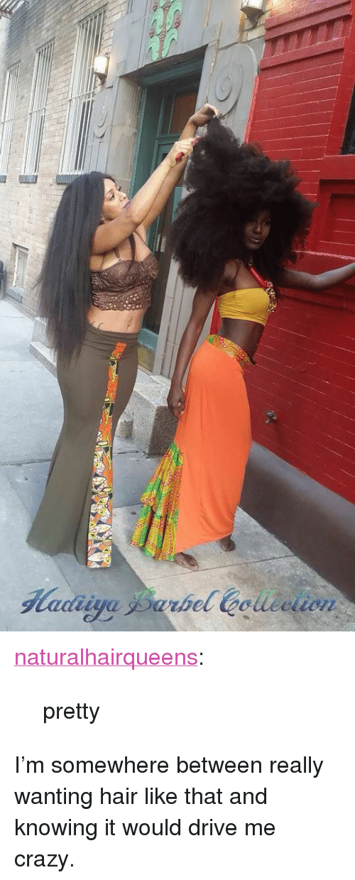 """drive me crazy: <p><a href=""""http://naturalhairqueens.tumblr.com/post/155456001547/pretty"""" class=""""tumblr_blog"""">naturalhairqueens</a>:</p><blockquote><p>pretty</p></blockquote>  <p>I&rsquo;m somewhere between really wanting hair like that and knowing it would drive me crazy.</p>"""