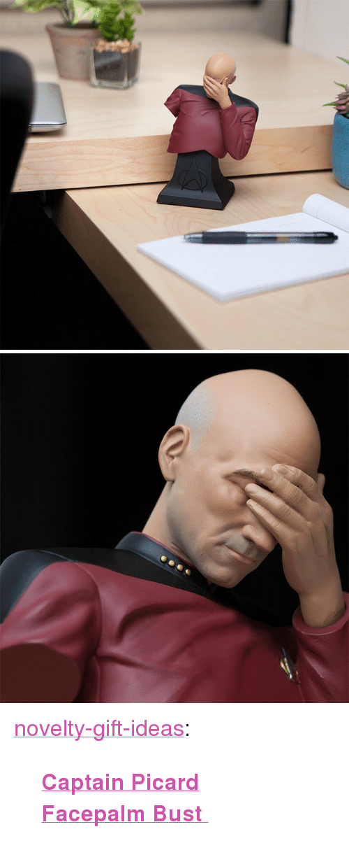 "picard: <p><a href=""https://novelty-gift-ideas.tumblr.com/post/173683563238/captain-picard-facepalm-bust"" class=""tumblr_blog"">novelty-gift-ideas</a>:</p><blockquote><p><b><a href=""https://awesomage.com/captain-picard-facepalm-bust/"">  Captain Picard Facepalm Bust   </a></b><br/></p></blockquote>"