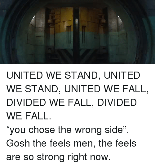 """United We Stand: <p>UNITED WE STAND, UNITED WE STAND, UNITED WE FALL, DIVIDED WE FALL, DIVIDED WE FALL. </p>  <p>""""you chose the wrong side"""". </p>  <p>Gosh the feels men, the feels are so strong right now.</p>"""