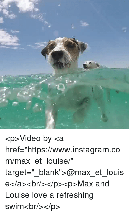 "Instagram, Love, and Target: <p>Video by <a href=""https://www.instagram.com/max_et_louise/"" target=""_blank"">@max_et_louise</a><br/></p><p>Max and Louise love a refreshing swim<br/></p>"