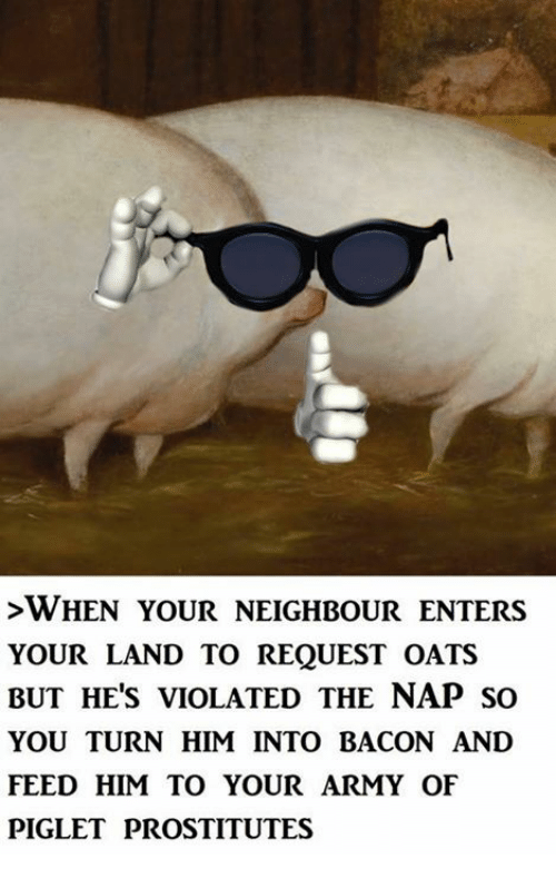 Memes, Army, and 🤖: >WHEN YOUR NEIGHBOUR ENTERS  YOUR LAND TO REQUEST OATS  BUT HE'S VIOLATED THE NAP SO  YOU TURN HIM INTO BACON AND  FEED HIM TO YOUR ARMY OF  PIGLET PROSTITUTES