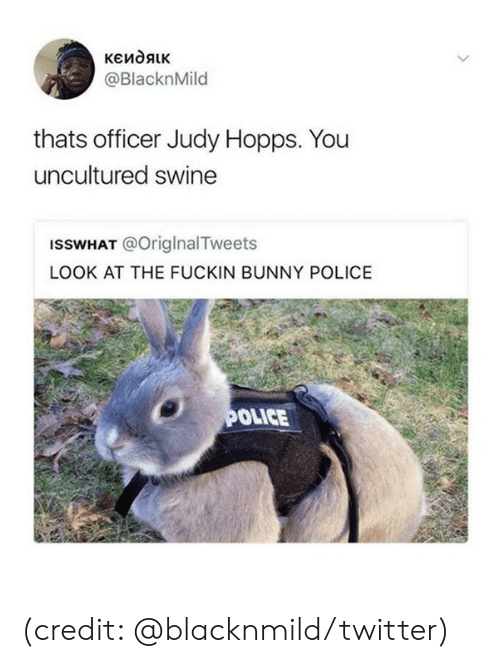 hopps: кеидяк  @BlacknMild  thats officer Judy Hopps. You  uncultured swine  ISSWHAT @OriglnalTweets  LOOK AT THE FUCKIN BUNNY POLICE  POLICE (credit: @blacknmild/twitter)