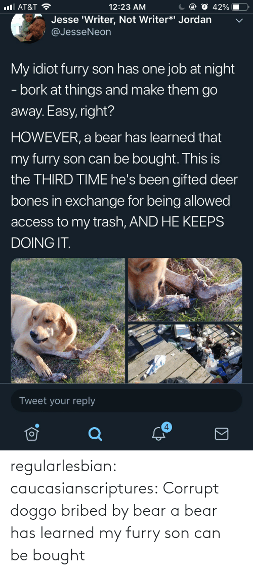 Deer: С @ О 42%-O,  12:23 AM  l AT&T  Jesse 'Writer, Not Writer*i Jordan  @JesseNeon  My idiot furry son has one job at night  - bork at things and make them go  away. Easy, right?  HOWEVER, a bear has learned that  my furry son can be bought. This is  the THIRD TIME he's been gifted deer  bones in exchange for being allowed  access to my trash, AND HE KEEPS  DOING IT  Tweet your reply  4 regularlesbian: caucasianscriptures: Corrupt doggo bribed by bear a bear has learned my furry son can be bought