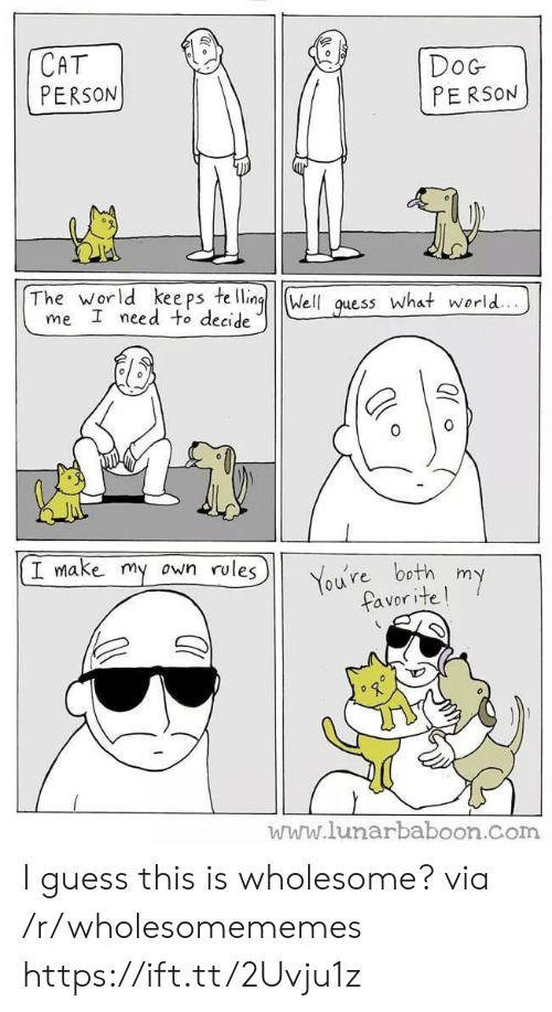 ite: СAT  PERSON  DoG  PERSON  The world kee ps te lling  me I need to decide  Well  what world...  guess  I make my own rules  You're both  favor ite!  my  www.lunarbaboon.com I guess this is wholesome? via /r/wholesomememes https://ift.tt/2Uvju1z