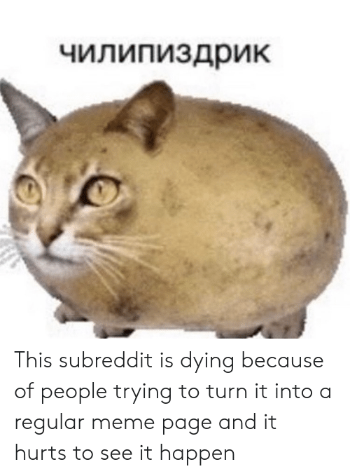 Meme, Page, and Hurts: чилипиздрик This subreddit is dying because of people trying to turn it into a regular meme page and it hurts to see it happen