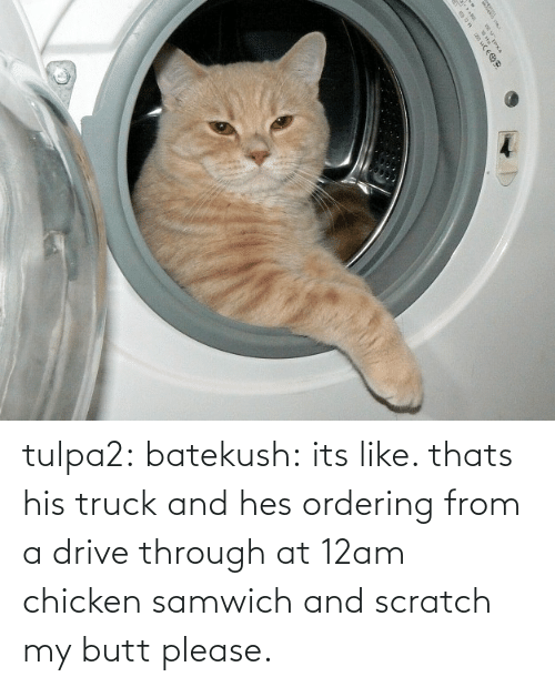 Its Like: |५ tulpa2: batekush: its like. thats his truck and hes ordering from a drive through at 12am chicken samwich and scratch my butt please.