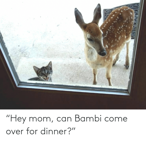 "come: ""Hey mom, can Bambi come over for dinner?"""