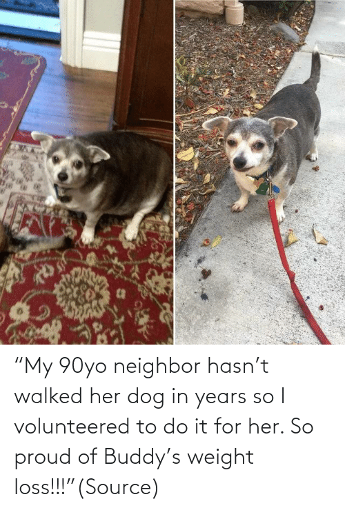 "Proud: ""My 90yo neighbor hasn't walked her dog in years so I volunteered to do it for her. So proud of Buddy's weight loss!!!""(Source)"