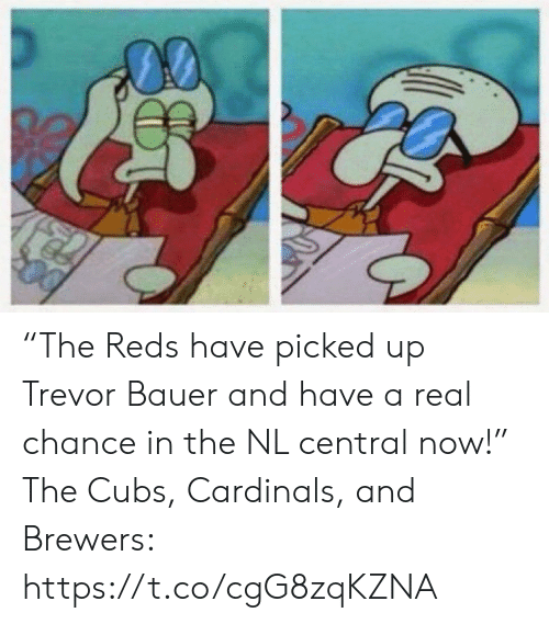 """Sports, Cardinals, and Cubs: """"The Reds have picked up Trevor Bauer and have a real chance in the NL central now!""""  The Cubs, Cardinals, and Brewers: https://t.co/cgG8zqKZNA"""
