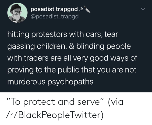 "blackpeopletwitter: ""To protect and serve"" (via /r/BlackPeopleTwitter)"