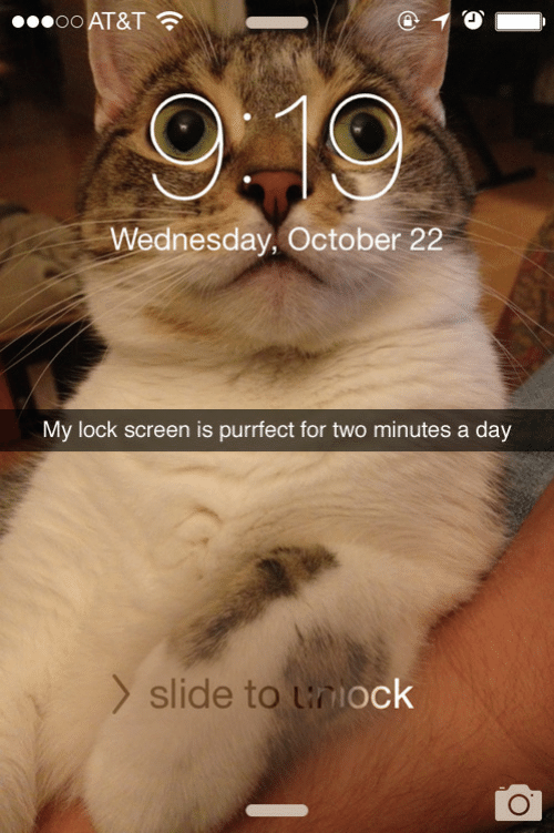 Lock Screen: ●•oo AT&T ?  9:19  Wednesday, October 22  My lock screen is purrfect for two minutes a day  > slide to lniock