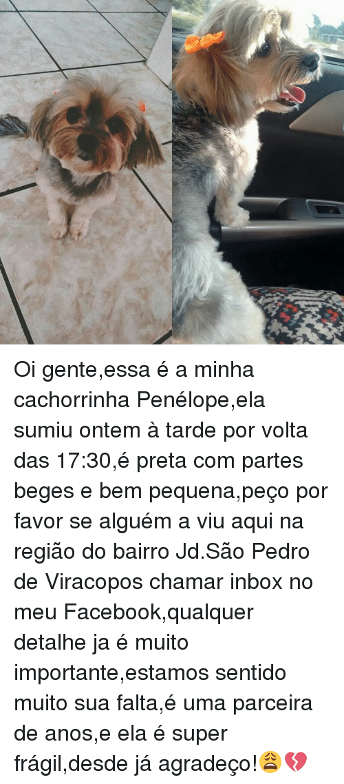 25 Best Memes About Sao Pedro Sao Pedro Memes