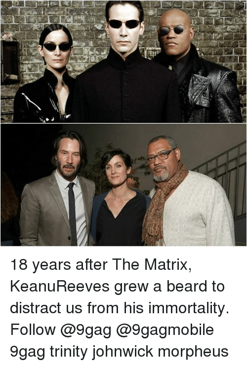 Morpheus: 느A!  의 18 years after The Matrix, KeanuReeves grew a beard to distract us from his immortality. Follow @9gag @9gagmobile 9gag trinity johnwick morpheus
