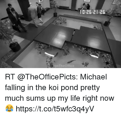 Life, Memes, and Michael: 0:26:21 26 RT @TheOfficePicts: Michael falling in the koi pond pretty much sums up my life right now 😂 https://t.co/t5wfc3q4yV