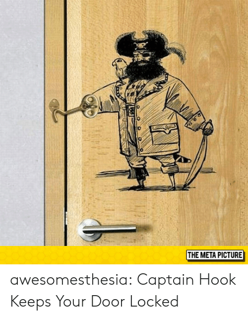 Tumblr, Blog, and Http: 0  THE META PICTURE awesomesthesia:  Captain Hook Keeps Your Door Locked