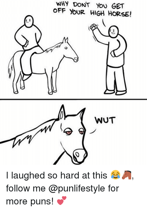 Memes, Puns, and Horse: 0  WHY DONT YOU GET  OFF YOUR HIGH HORSE!  WUT I laughed so hard at this 😂🐴, follow me @punlifestyle for more puns! 💕
