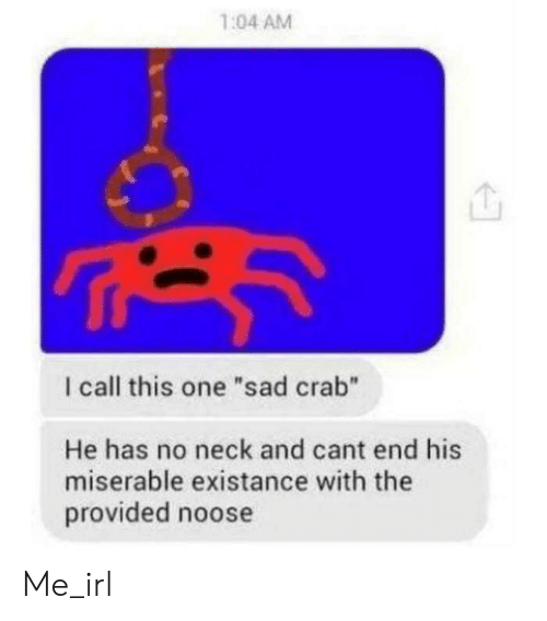 "Existance: 1:04 AM  I call this one ""sad crab""  He has no neck and cant end his  miserable existance with the  provided noose Me_irl"