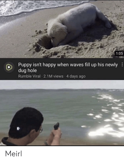 views: 1:05  Puppy isn't happy when waves fill up his newly  dug hole  Rumble Viral 2.1M views 4 days ago Meirl