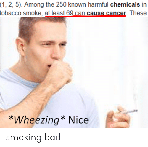 Chemicals: (1, 2, 5). Among the 250 known harmful chemicals in  tobacco smoke, at least 69 can cause cancer. These  *Wheezing* Nice smoking bad