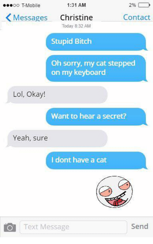 keyboarding: 1:31 AM  OO TMobile  Messages  Christine  Contact  Stupid Bitch  Oh sorry, my cat stepped  on my keyboard  Lol, Okay!  Want to hear a secret?  Yeah, sure  I dont have a cat  O Text Message  Send