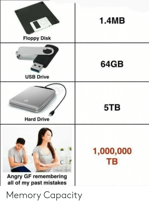 Drive, Angry, and Mistakes: 1.4MB  Floppy Disk  64GB  USB Drive  5TB  Hard Drive  1,000,000  ТВ  Angry GF remembering  all of my past mistakes Memory Capacity