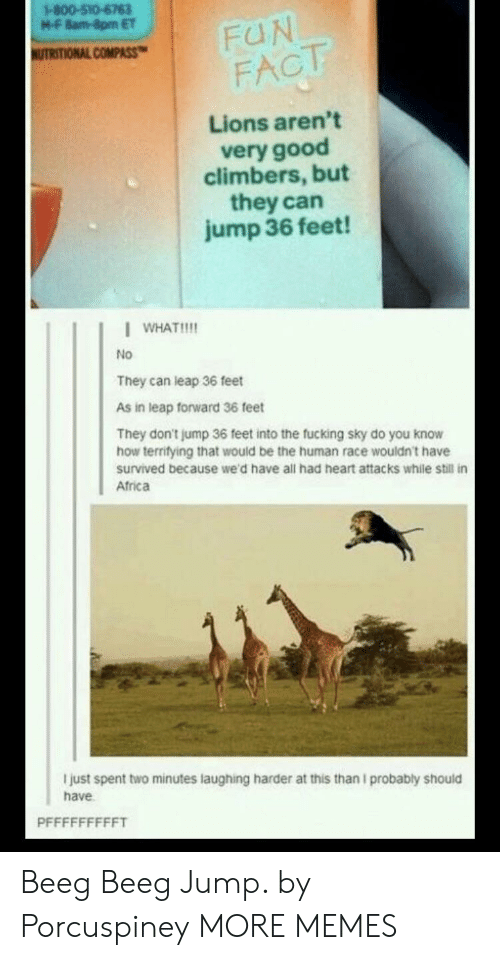 Africa, Dank, and Fucking: 1-800-510-6763  M-F 8am-8pm ET  FUN  FACT  HUTRITIONAL COMPASS  Lions aren't  very good  climbers, but  they can  jump 36 feet!  WHAT!!  No  They can leap 36 feet  As in leap forward 36 feet  They don't jump 36 feet into the fucking sky do you know  how territying that would be the human race wouldn't have  survived because we'd have all had heart attacks while still in  Africa  I just spent two minutes laughing harder at this than I probably should  have  PFFFFFFFFFT Beeg Beeg Jump. by Porcuspiney MORE MEMES