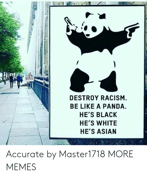 Destroy Racism Be Like A Panda: 1  DESTROY RACISM  BE LIKE A PANDA.  HE'S BLACK  HE'S WHITE  HE'S ASIAN Accurate by Master1718 MORE MEMES