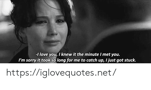 Love, Sorry, and Got: -1 love you, I knew it the minute I met you.  I'm sorry it took so long for me to catch up, I just got stuck. https://iglovequotes.net/
