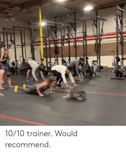 10 10: 10/10 trainer. Would recommend.
