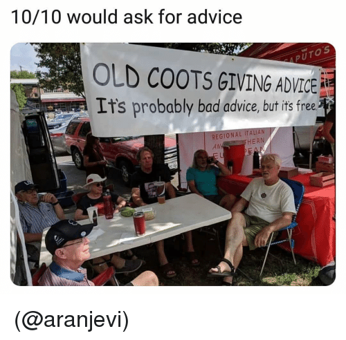 10 10 Would: 10/10 would ask for advice  0  5  OLD COOTS GIVING ADVICE  Its probably bad advice, but is free  REGIONAL ITALI  AN  HERN (@aranjevi)