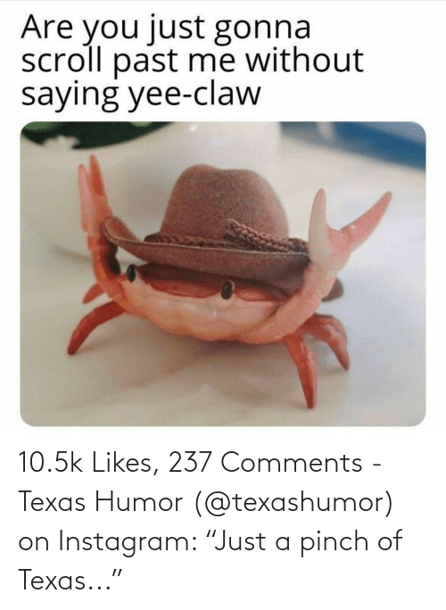"""Texas: 10.5k Likes, 237 Comments - Texas Humor (@texashumor) on Instagram: """"Just a pinch of Texas..."""""""