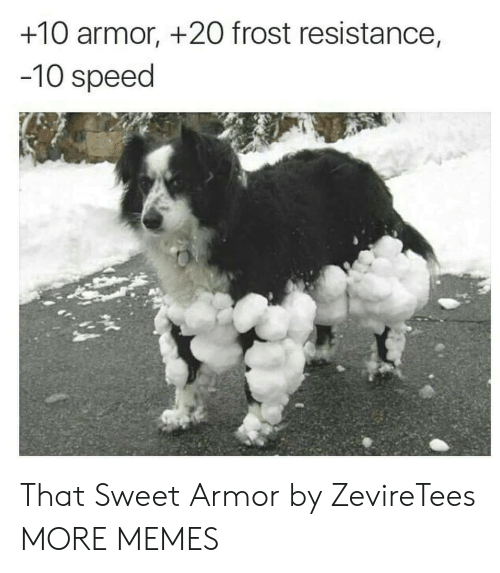 Dank, Memes, and Target: +10 armor, +2O frost resistance,  -10 speed That Sweet Armor by ZevireTees MORE MEMES