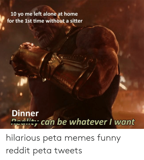 Being Alone, Funny, and Memes: 10 yo me left alone at home  for the 1st time without a sitter  Dinner  n^ Δ can be whatever I want hilarious peta memes funny reddit peta tweets