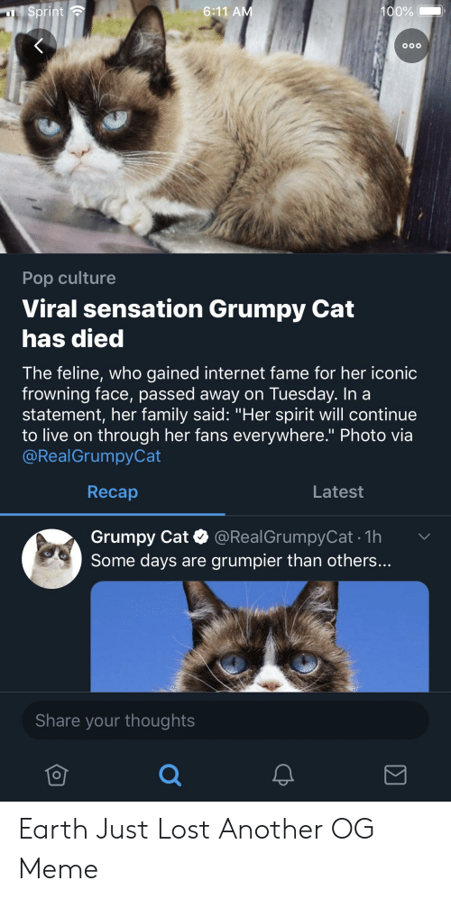 "Family, Internet, and Meme: 100%  6:11 A  o0o  Pop culture  Viral sensation Grumpy Cat  has died  The feline, who gained internet fame for her iconic  frowning face, passed away on Tuesday. In a  statement, her family said: ""Her spirit will continue  to live on through her fans everywhere."" Photo via  @RealGrumpyCat  Recap  Latest  Grumpy Cat @RealGrumpyCat .1h  Some days are grumpier than others...  Share your thoughts Earth Just Lost Another OG Meme"