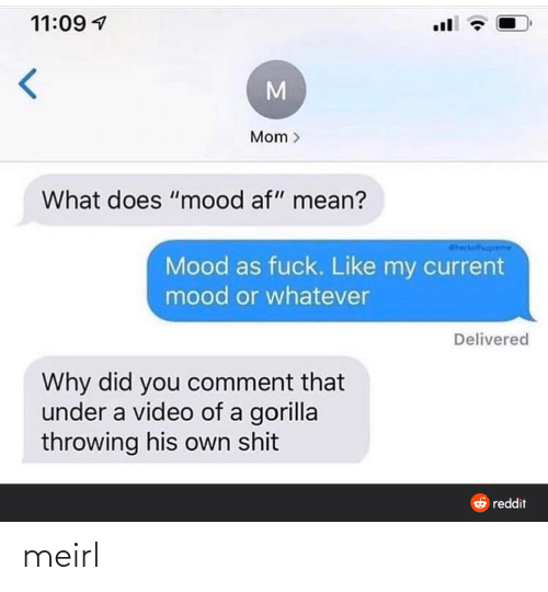 "AF: 11:09 1  Mom >  What does ""mood af"" mean?  Sheckalfhuprem  Mood as fuck. Like my current  mood or whatever  Delivered  Why did you comment that  under a video of a gorilla  throwing his own shit  6 reddit meirl"