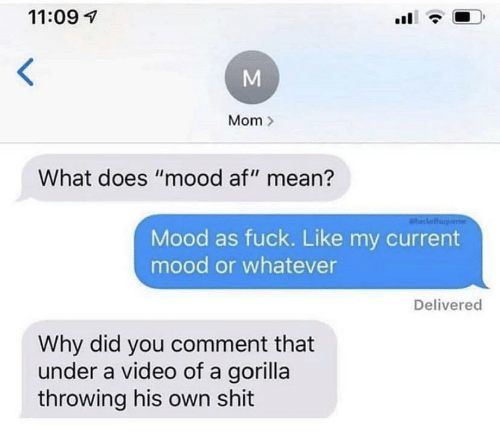"Current Mood: 11:09  Mom  What does ""mood af"" mean?  aheckoff  Mood as fuck. Like my current  mood or whatever  Delivered  Why did you comment that  under a video of a gorilla  throwing his own shit"