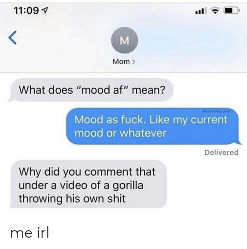 "Current Mood: 11:09  Mom  What does ""mood af"" mean?  heckaffup  Mood as fuck. Like my current  mood or whatever  Delivered  Why did you comment that  under a video of a gorilla  throwing his own shit  M me irl"
