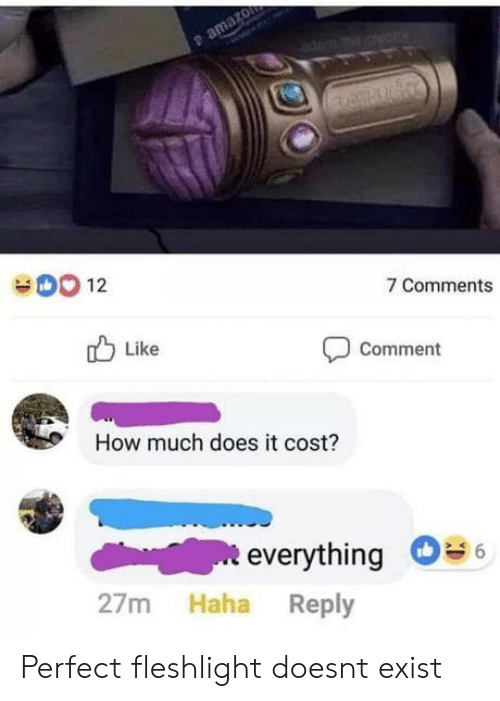 Haha, How, and Fleshlight: 12  7 Comments  Like  Comment  How much does it cost?  everything  27m Haha Reply Perfect fleshlight doesnt exist
