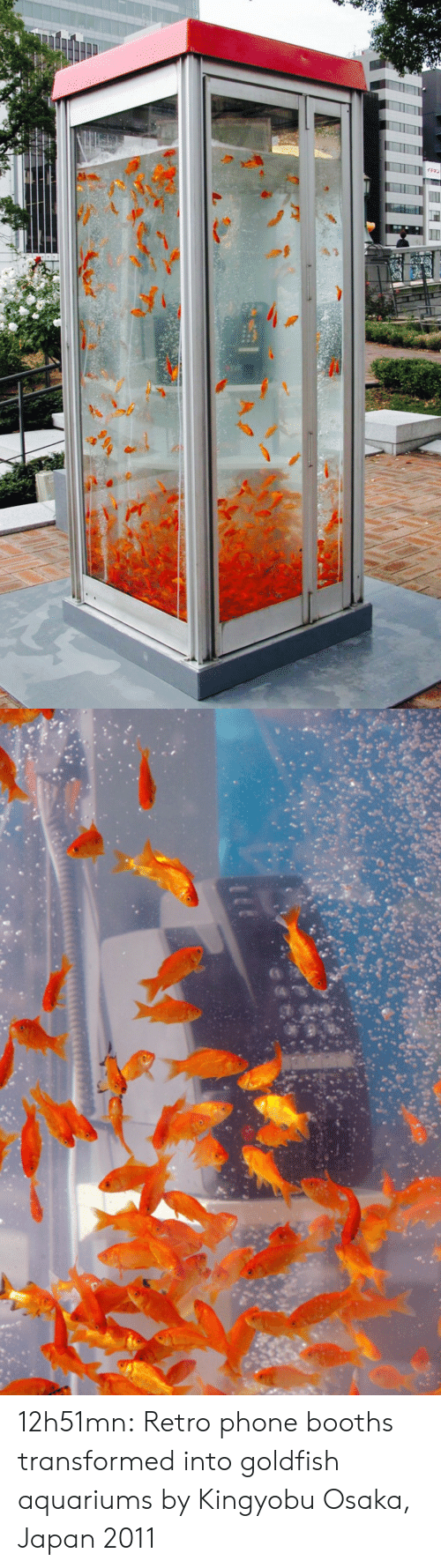 Goldfish, Phone, and Target: 12h51mn: Retro phone booths transformed into goldfish aquariums by Kingyobu Osaka, Japan 2011