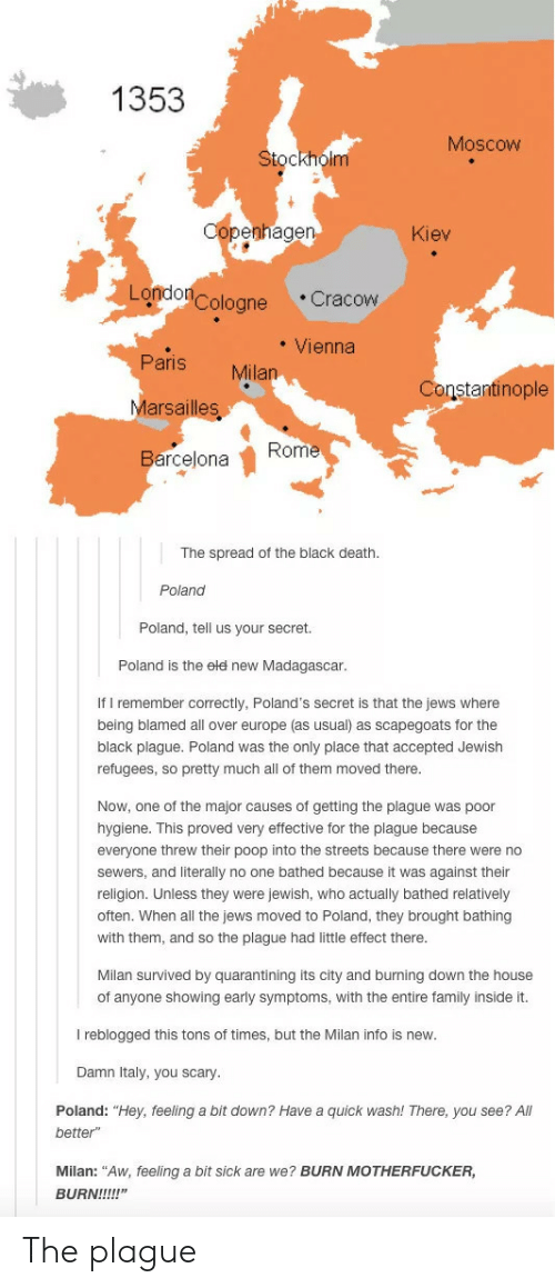 """You Scary: 1353  Moscow  Stockholm  Copenhagen  Kiev  London Cologne  Cracow  Vienna  Paris  Milan  Marsailles  Constantinople  Rome  Barcelona  The spread of the black death  Poland  Poland, tell us your secret.  Poland is the eld new Madagascar.  If I remember correctly, Poland's secret is that the jews where  being blamed all over europe (as usual) as scapegoats for the  black plague. Poland was the only place that accepted Jewish  refugees, so pretty much all of them moved there.  Now, one of the major causes of getting the plague was poor  hygiene. This proved very effective for the plague because  everyone threw their poop into the streets because there were no  sewers, and literally no one bathed because it was against their  religion. Unless they were jewish, who actually bathed relatively  often. When all the jews moved to Poland, they brought bathing  with them, and so the plague had little effect there.  Milan survived by quarantining its city and burning down the house  of anyone showing early symptoms, with the entire family inside it.  I reblogged this tons of times, but the Milan info is new.  Damn Italy, you scary.  Poland: """"Hey, feeling a bit down? Have a quick wash! There, you see? All  better""""  Milan: """"Aw, feeling a bit sick are we? BURN MOTHERFUCKER  BURN!!!!!"""" The plague"""