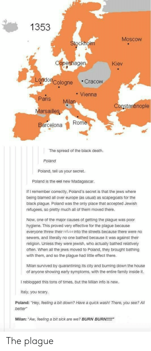 """You Scary: 1353  Moscow  Stockholm  penhage  Kiev  Londo  Cologne Cracow  Vienna  Paris Milan  Marsailles  Barcejona  Constantinople  Rome  The spread of the black death.  Poland  Poland, tell us your secret.  Poland is the eld neW Madagascar  If I remember correctly, Poland's secret is that the jews where  being blamed all over europe (as usual) as scapegoats for the  black plague. Poland was the only place that accepted Jewish  refugees, so pretty much all of them moved there  Now, one of the major causes of getting the plague was poor  hygiene. This proved very effective for the plague because  everyone threw their refuse into the streets because there were no  sewers, and literally no one bathed because it was against their  religion. Unless they were Jewish, who actually bathed relatively  often. When all the jews moved to Poland, they brought bathing  with them, and so the plague had little effect there  Milan survived by quarantining its city and burning down the house  of anyone showing early symptoms, with the entire family inside it.  I reblogged this tons of times, but the Milan info is new  Italy, you scary  Poland: """"Hey, feeling a bit down? Have a quick wash! There, you see? All  better""""  Milan: """"Aw, feeling a bit sick are we? BURN BURN!!!!"""" The plague"""