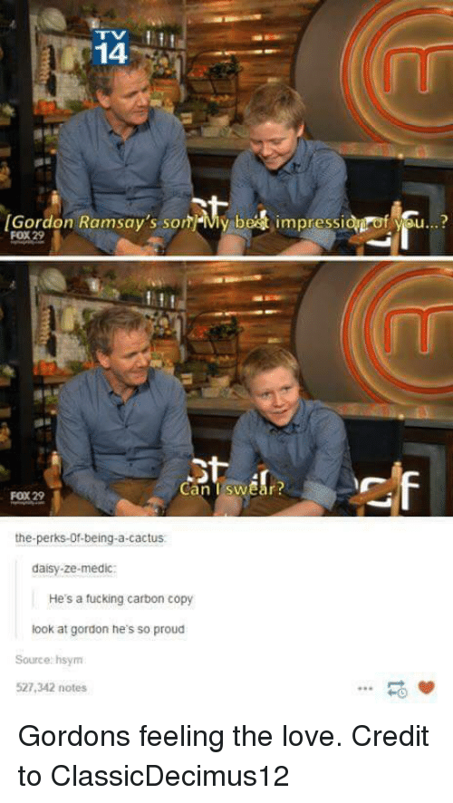 Love, Proud, and Fox: 14  [Gordon Ramsay's som-My be  impressi  f se..?  FOX 29  Can TswEar  FOX 29  the-perks-Of-being-a-cactus  daisy-ze-medic:  He's a tucking carbon copy  look at gordon he's so proud  Source: hsym  527,342 notes  -0 Gordons feeling the love. Credit to ClassicDecimus12