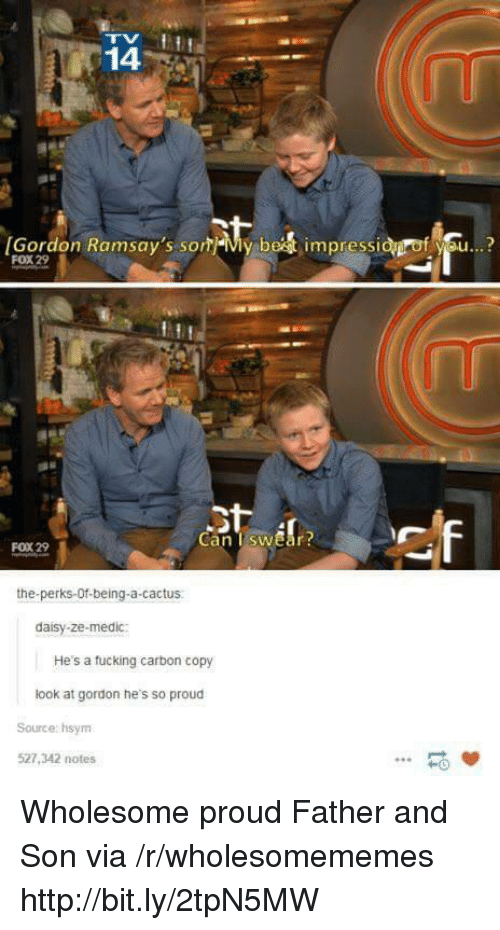 Http, Proud, and Wholesome: 14  [Gordon Ramsay's som-My be  impressi  f se..?  FOX 29  Can TswEar  FOX 29  the-perks-Of-being-a-cactus  daisy-ze-medic:  He's a tucking carbon copy  look at gordon he's so proud  Source: hsym  527,342 notes  -0 Wholesome proud Father and Son via /r/wholesomememes http://bit.ly/2tpN5MW