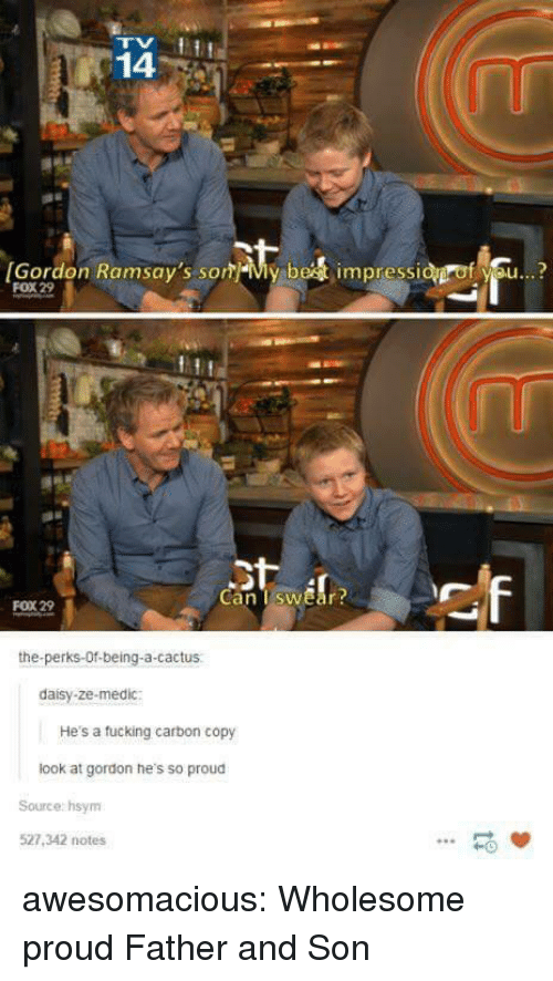 Tumblr, Blog, and Http: 14  [Gordon Ramsay's som-My be  impressi  f se..?  FOX 29  Can TswEar  FOX 29  the-perks-Of-being-a-cactus  daisy-ze-medic:  He's a tucking carbon copy  look at gordon he's so proud  Source: hsym  527,342 notes  -0 awesomacious:  Wholesome proud Father and Son