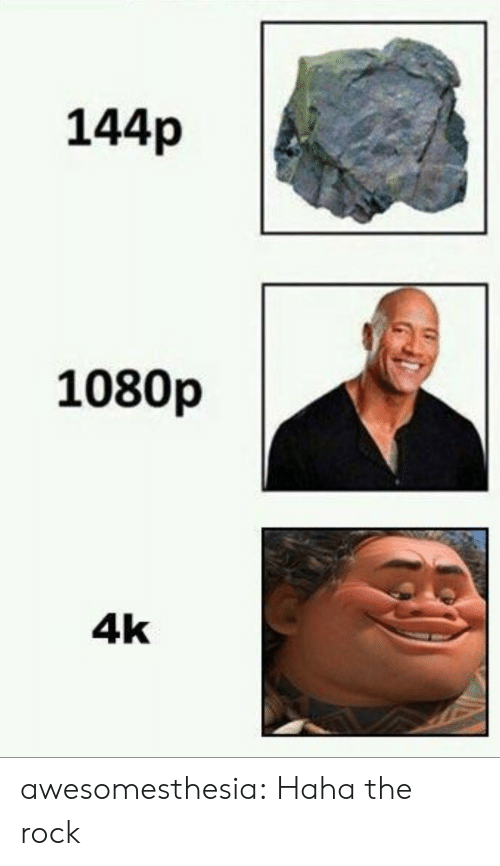 The Rock, Tumblr, and Blog: 144p  1080p  4k awesomesthesia:  Haha the rock