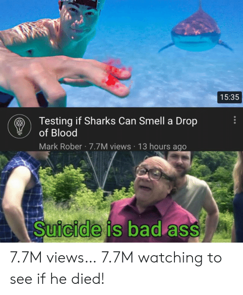 Can Smell: 15:35  Testing if Sharks Can Smell a Drop  of Blood  Mark Rober 7.7M views 13 hours ago  Suicide is bad ass 7.7M views… 7.7M watching to see if he died!